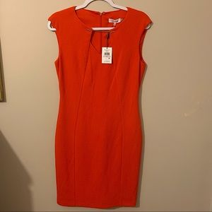NWT Calvin Klein Sheath Dress - US size 6